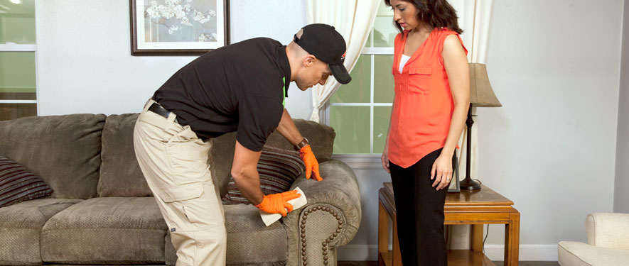 Wesley Chapel, FL carpet upholstery cleaning