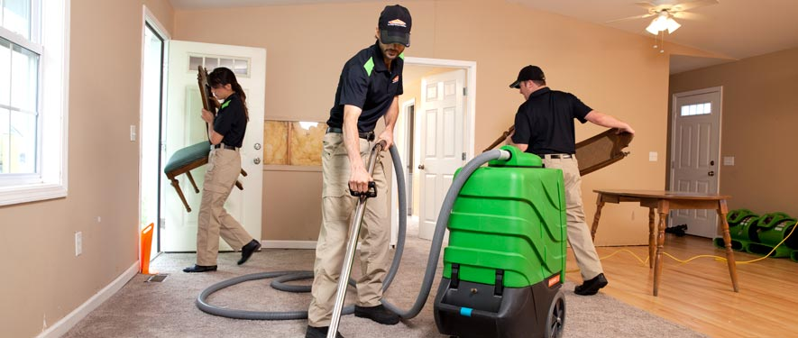 Wesley Chapel, FL cleaning services