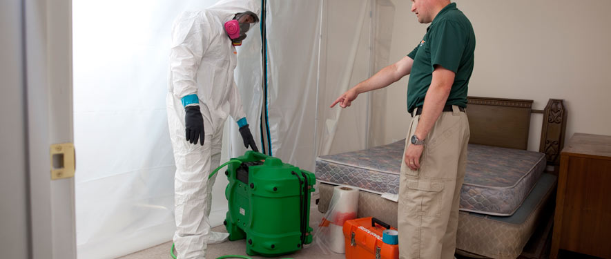 Wesley Chapel, FL mold removal process